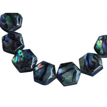 Abalone perle hexagon 10 mm -4 stk